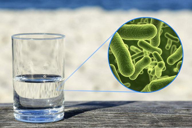 Фильтры обеспечивают очистку воды